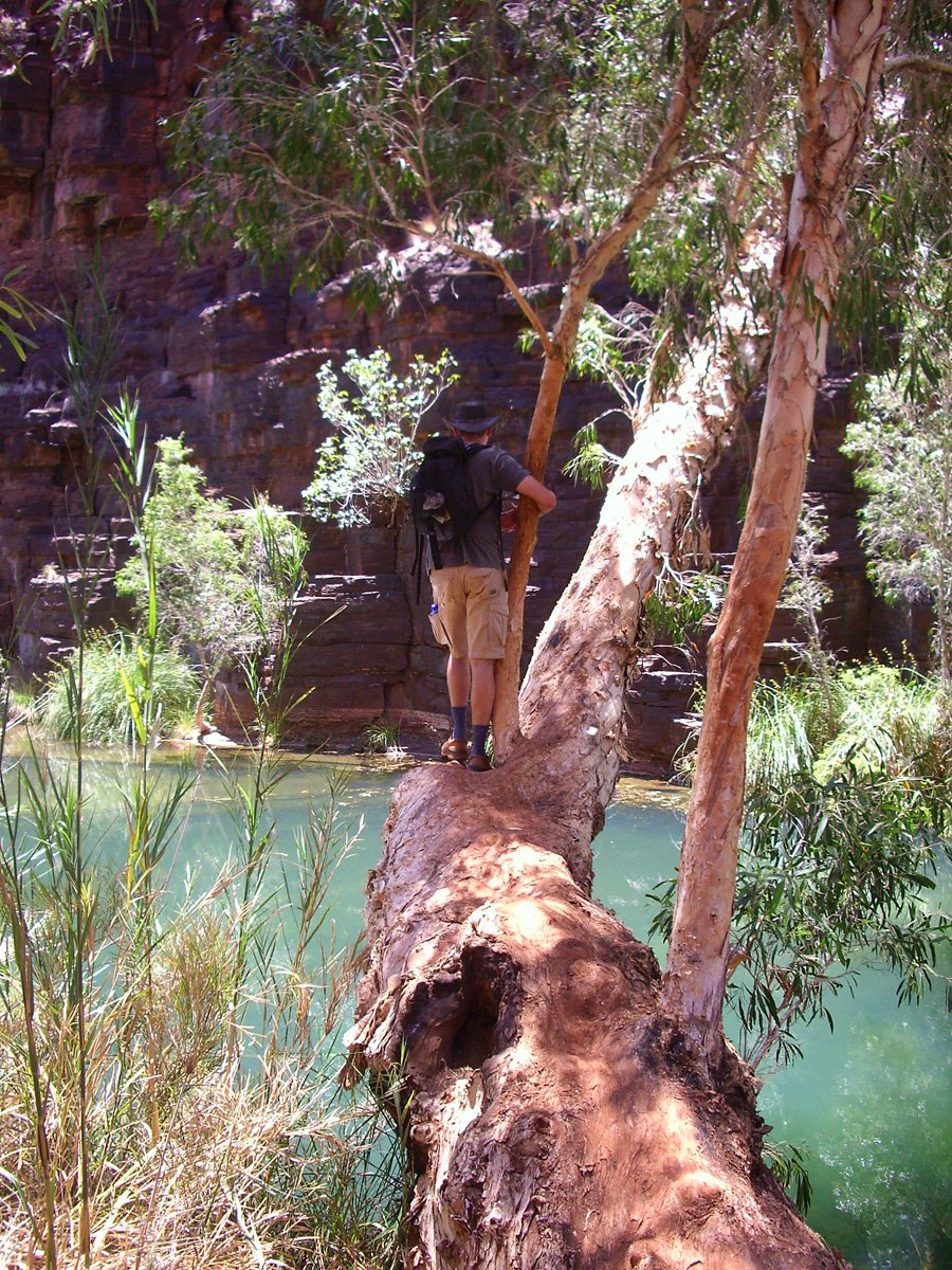 Kakadu National Park - WA Experts