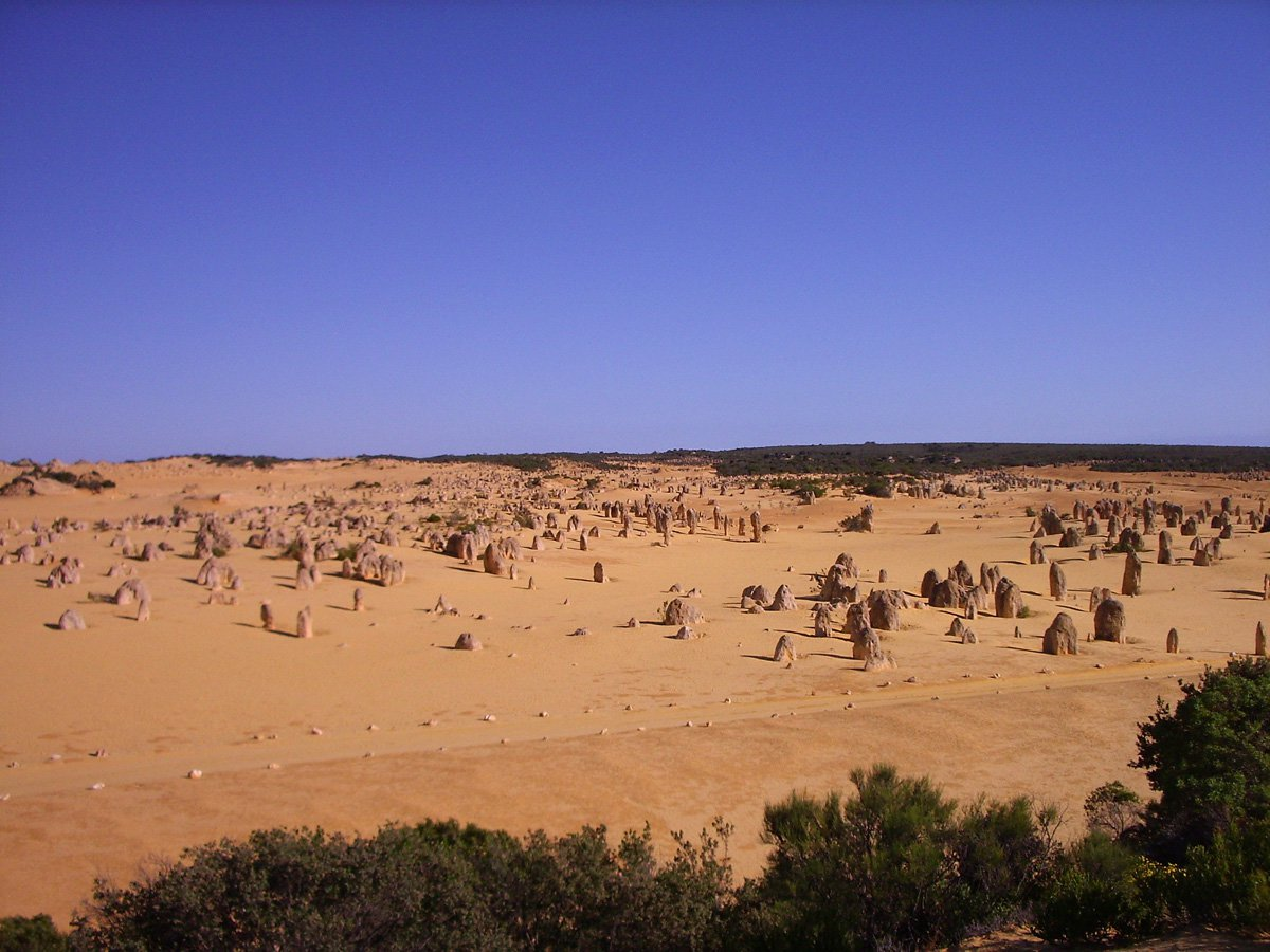 Pinnacles - WA Experts
